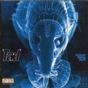 Tad-Infrared_10