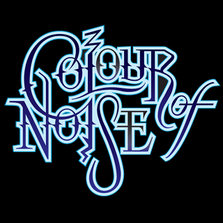 Colour Of Noise logo